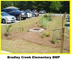 Bradley Creek BMP1