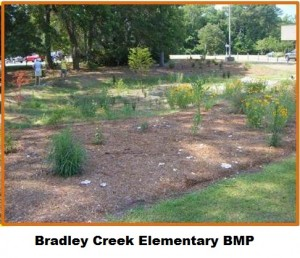 Bradley Creek BMP2
