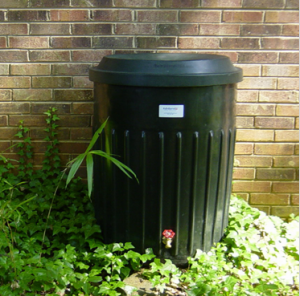 Rain Barrel Sales